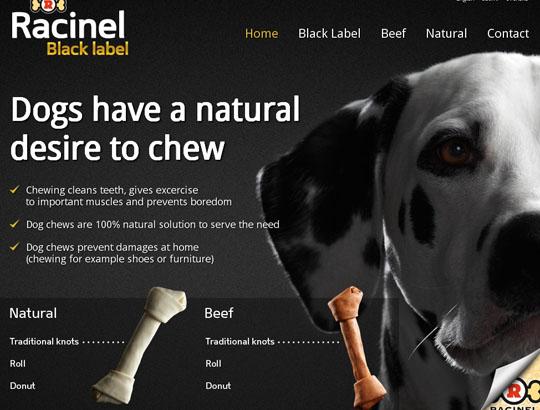 Állati webdesign | weboldal keszites friss  | webdesign web honlapkészítés állat